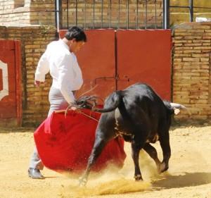 Alberto Cossio.  Festval Carmona 2013