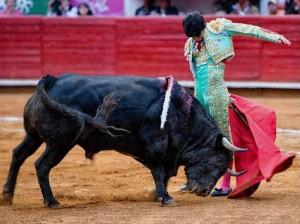 Arrucina de Alejandro Talavante en México