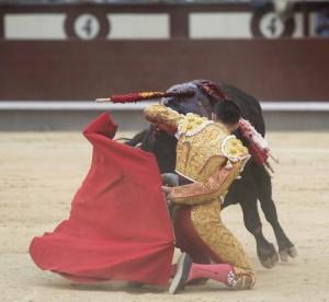 Arrucina de rodilla Alejandro Talavante