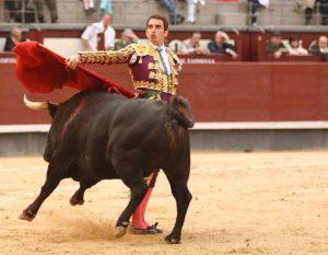 Bernadina de Sebastián Cortés